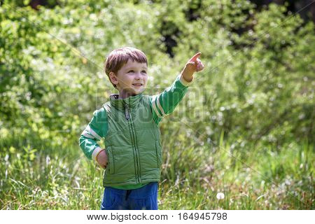 Five Year Old Boy Looking And Pointing His Finger At The Strange Tree.