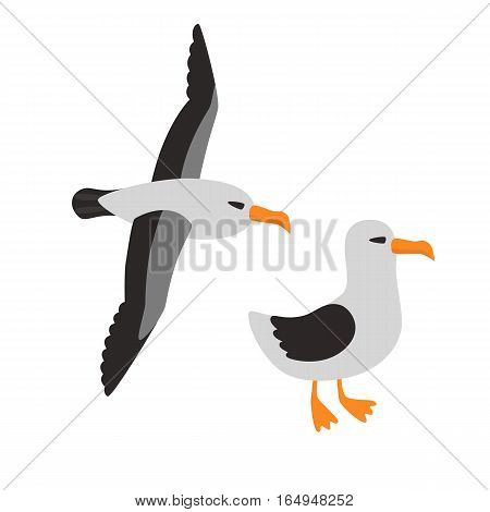 Bird Albatross Set Cartoon Vector Illustration for children. one Albatross is flying the other is