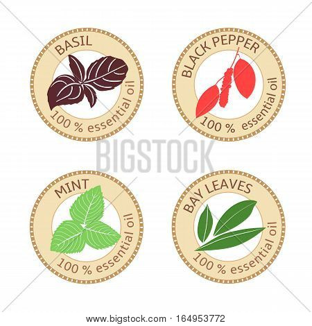 Set of flat essential oil labels. Bay leaves, basil, black pepper, mint. Logo collection. Vector illustration. Brown stamps, bright silhouettes. For stickers price tags advertising banners, poster