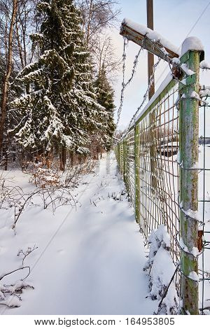 Part of icy fence protected area near the winter forest.