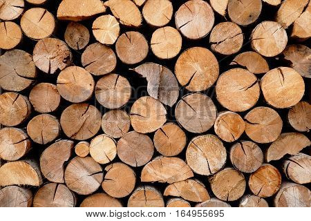 A pile of wood logs in storage