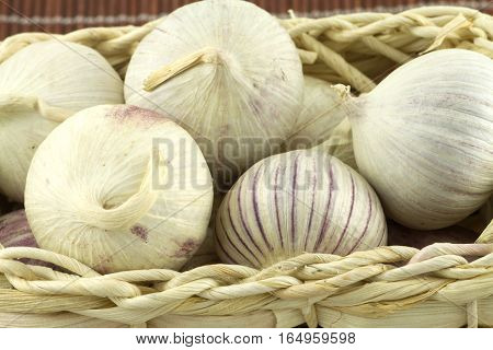 Ripe fragrant garlic in wicker basket on straw mat front view closeup