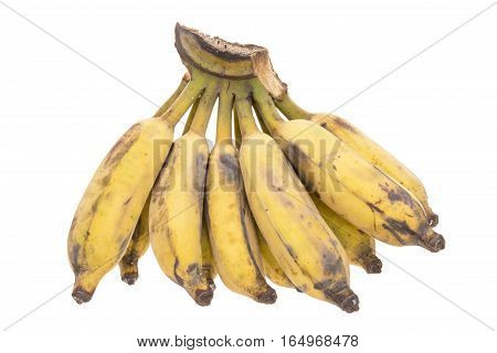 Last Ripe Banana