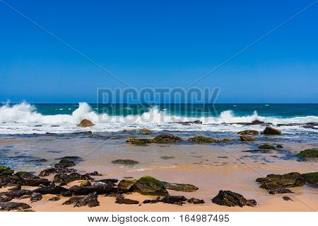 Beautiful Seascape Of Sandy Ocean Beach