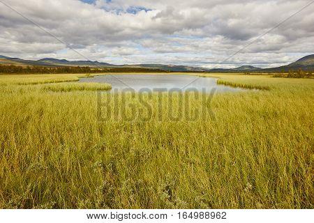 Norway landscape. Dovrefjell-Sunndalsfjella National Park. Fokstumyra marshes. Horizontal