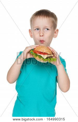 Small Boy With Hamburger