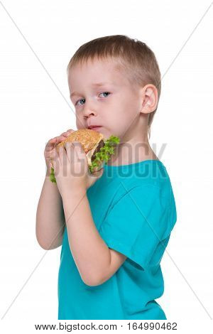 Little Boy Eats Hamburger