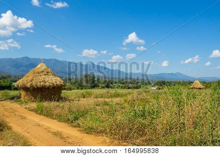 Harvesting of straw looks like a cottage in Pai, Thailand