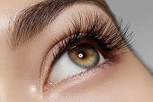 Beautiful macro shot of female eye with classic clean makeup. Perfect shape of eyebrows brown eyeshadows and long eyelashes. Cosmetics and make-up. Closeup macro shot of fashion natural eyes visage poster
