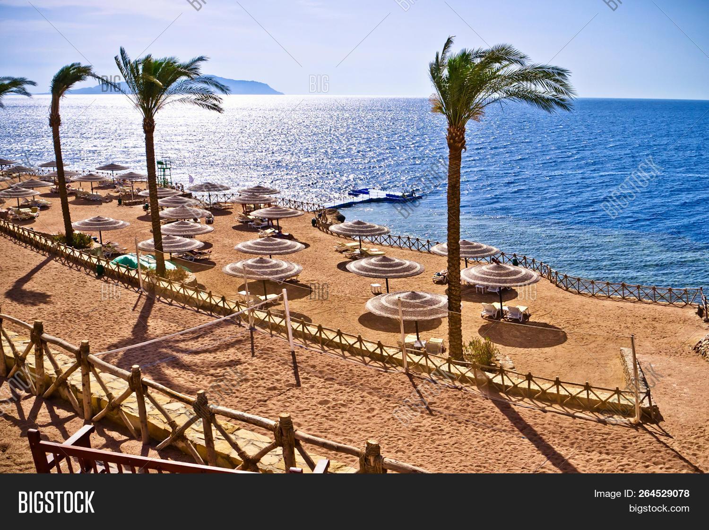 Egypt Red Sea Sinai Image Photo Free Trial Bigstock