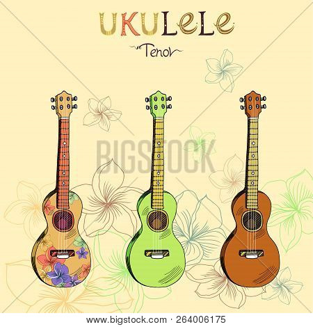 Vector Illustration With Traditional Hawaiian Guitar Ukulele Tenor In Three Different Versions: Wood
