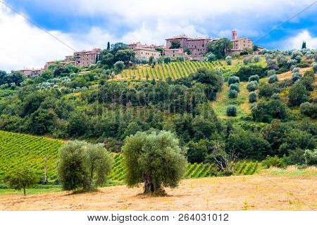 Castelnuovo dell'Abate, little village near Montalcino in Tuscany, Italy; famous for the abbey of sant Antimo poster