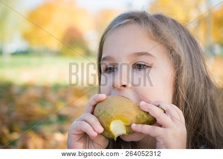 Portrait Of A Beautiful Little Girl Who Eats A Pear On A Picnic In The Autumn Park, Opyspace Nature