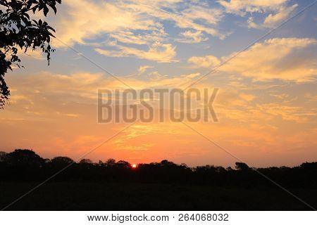 Sundown from Pantanal. Brazilian wetland region. Panorama from Brazil poster