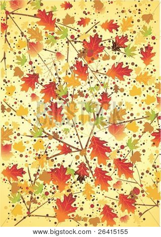 colorful autumn leaves,vector background