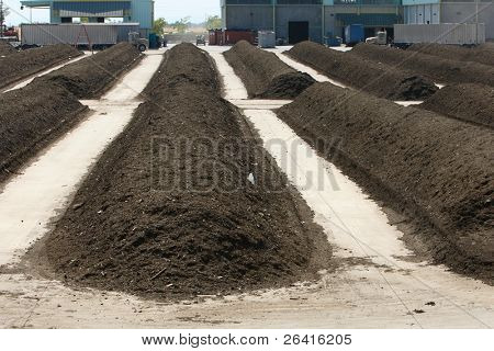 Rows of mulch at the green waste recycle plant