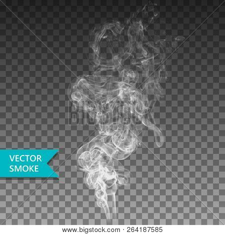 Vector Realistic Smoke On The Transparent Background.