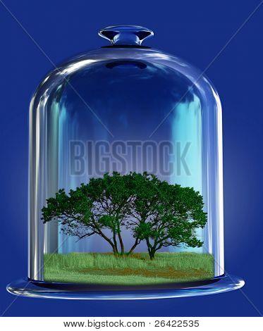 tree in retort
