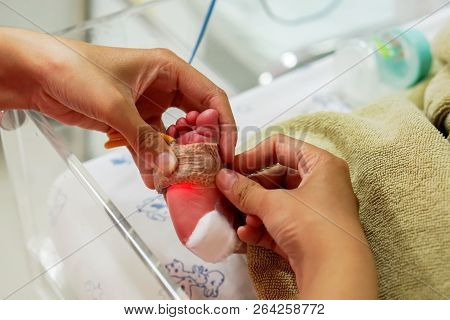 Hands Of Pediatric Nurse Using Medical Adhesive Plaster Stick And Strap To Measure Oxygen In The Blo