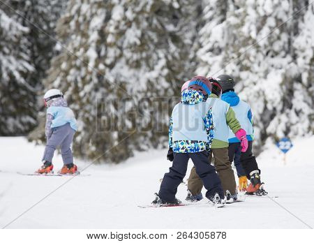 Group Of Small Kids With Helmets And School Vests Skiing On Slope With Firs In Background