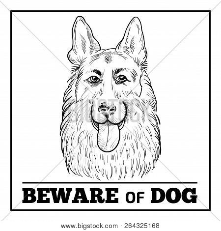 German Shepherd Portrait With Beware Sign. Watchdog Face Hand Drawn Sketch Isolated On White Backgro