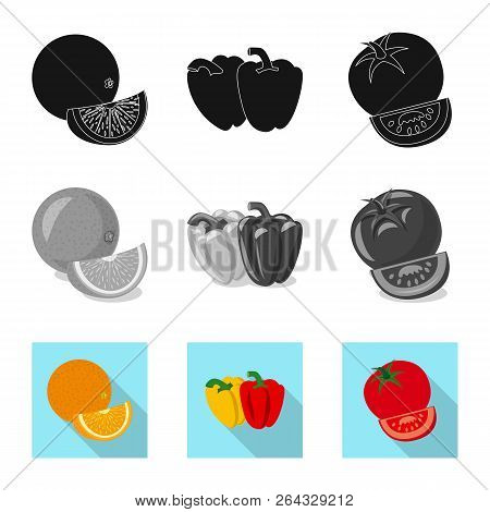 Vector Illustration Of Vegetable And Fruit Symbol. Set Of Vegetable And Vegetarian Stock Symbol For