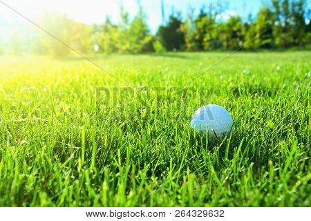 Image Of Golf Game. Golf Balls In Grass.