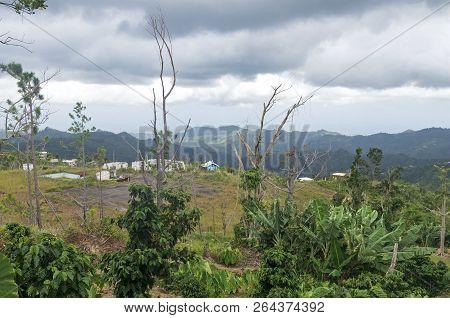 Mountainous Region Of Puerto Rico In Foothills Of Jayuya Overlooking Small Village