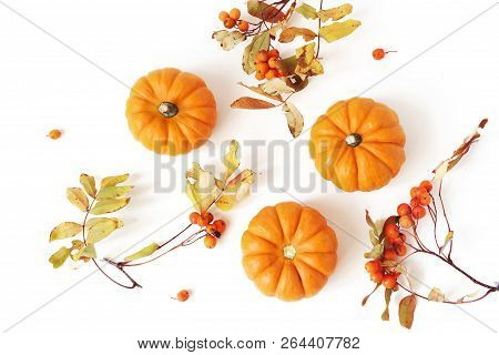Autumn Frame Made Of Little Orange Pumpkins, Rowanberries And Colorful Leaves Isolated On White Tabl