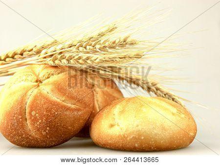Homemade Whole Wheat Bread Color Image Stock Photos