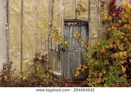 Abstract Strange Background. Old Wooden Door.old Door. Old Doors. Image Of Wooden Door. Old House. O