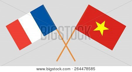 Socialist Republic Of Vietnam And France. The Vietnamese And French Flags. Official Colors. Correct