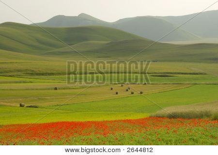 A Grand Apennine Scene