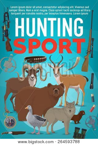 Hunting Sport Poster, Wild Forest Animals And Hunter Ammunition. Vector Duck Or Goose, Bear And Wolf