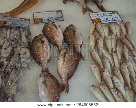 Traditional Fish Market At Corfu Town Kerkyra In Greece. Different Kind Of Mediterranean Fresh Fishe