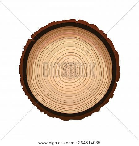Texture Of Sawn Wood Brown Object Vector Isolated