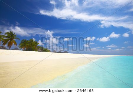 Tropical Beach In The Indian Ocean