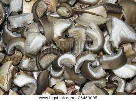 sliced oyster mushrooms