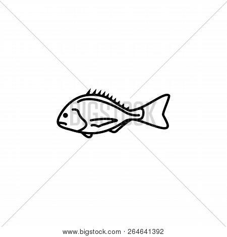 Cod Images Illustrations Vectors Free