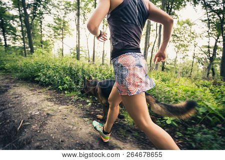 Trail Running Athletic Woman In Green Forest, Sports Inspiration And Motivation. Female Trail Runner