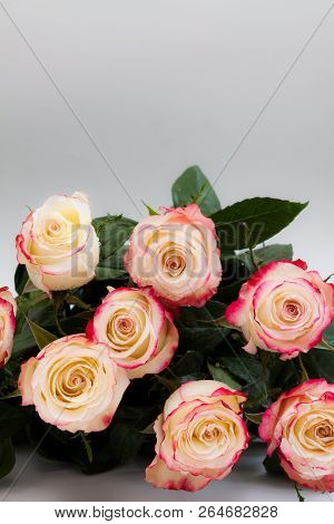 Bouquet Of Roses On Grey Background.