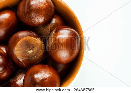 Bowl With Autumn Chestnuts.