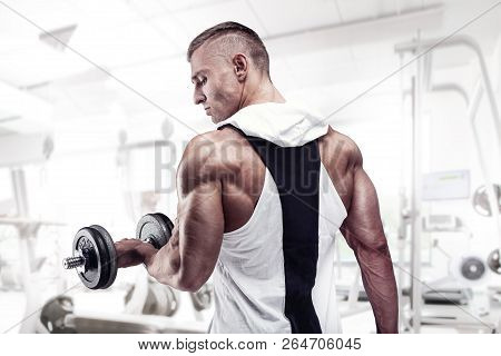 Strong Athletic Man Fitness Model Workout With Dumbbel, Rear View, Triceps, Latissimus