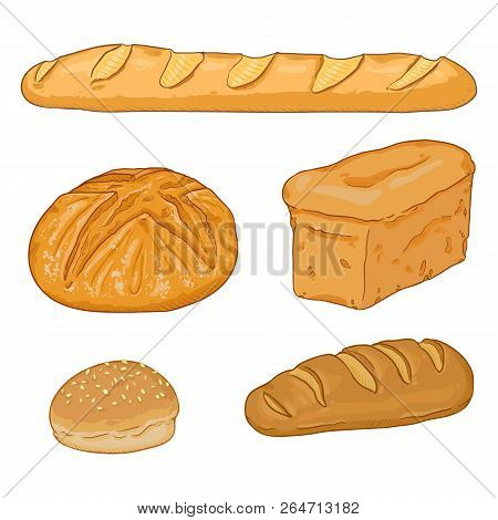 Vector Cartoon Set Of Fresh Baked Bread Loaves And Baguettes
