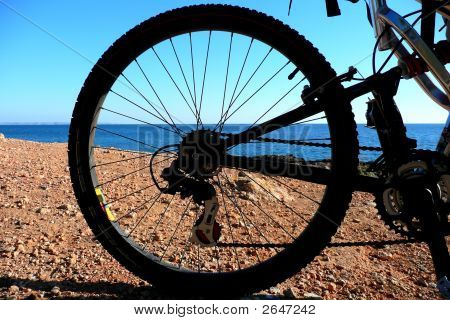 Rear Bike Wheel