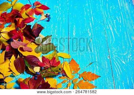 Colorful Fall Leaves Border With Blank Antique Rustic Teal Blue Wood Background Autumn, Copy Space