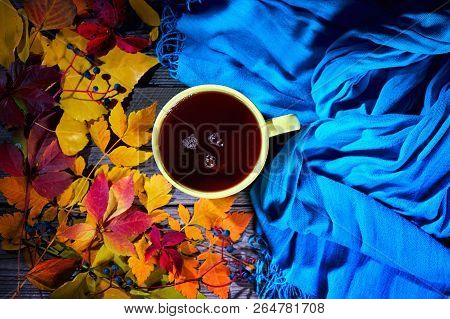 Cup Of Tea With Colourful Autumn Leaves.
