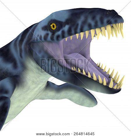Dakosaurus Marine Reptile Head 3d Illustration - Dakosaurus Was A Marine Carnivorous Reptile That Li