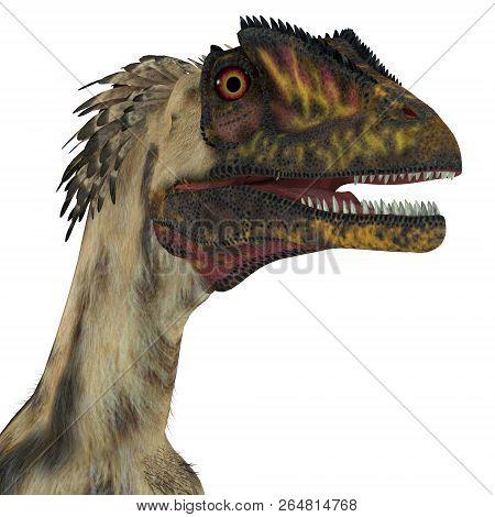 Deinonychus Dinosaur Head 3d Illustration - Deinonychus Was A Carnivorous Theropod Dinosaur That Liv