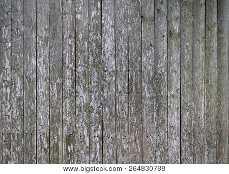 Old Weathered Wood Texture Background. Old Fence.